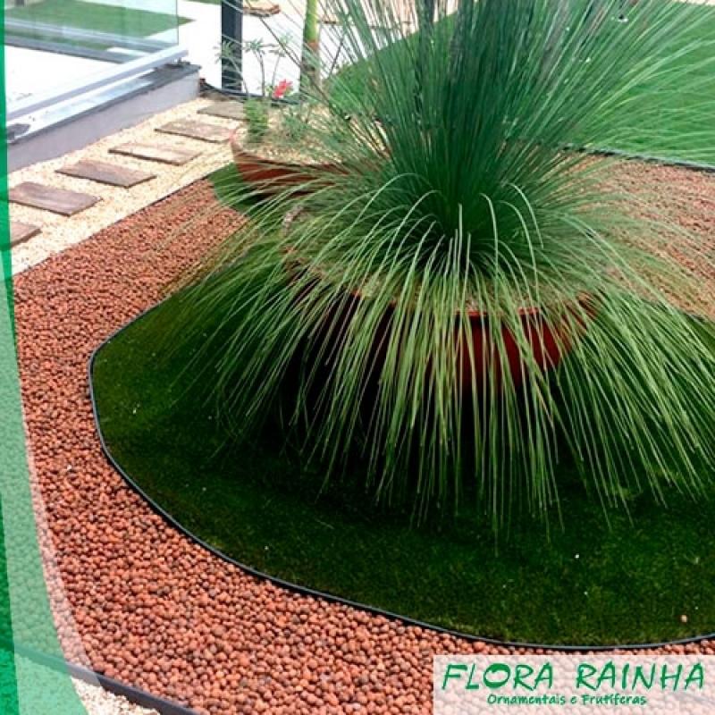 Argila Expandida para Jardim Valor Indaiatuba - Vaso de Barro para Jardim