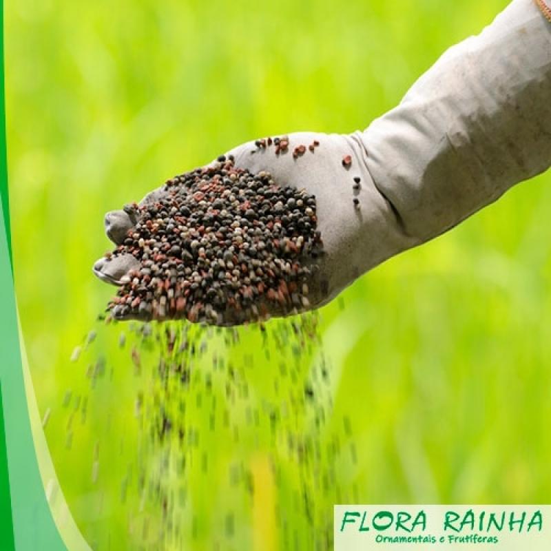 Fertilizante para árvores Frutíferas Pirapora do Bom Jesus - Adubo para Ipê