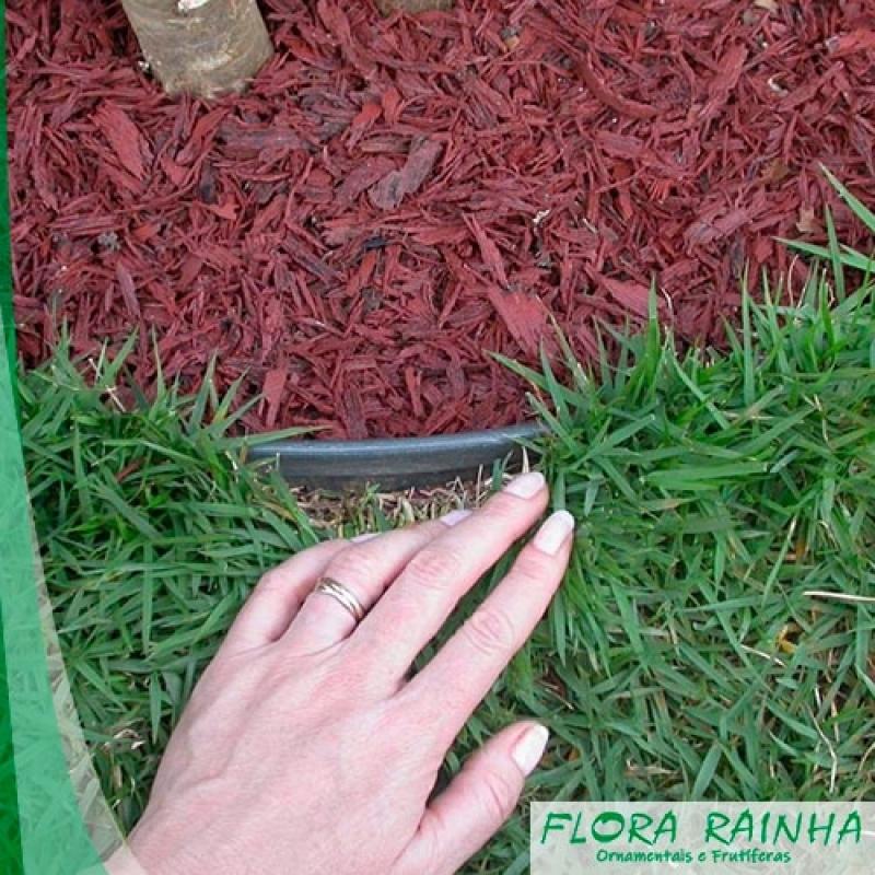 Limitador de Grama para Jardim Valor Parque Colonial - Vaso de Barro para Jardim