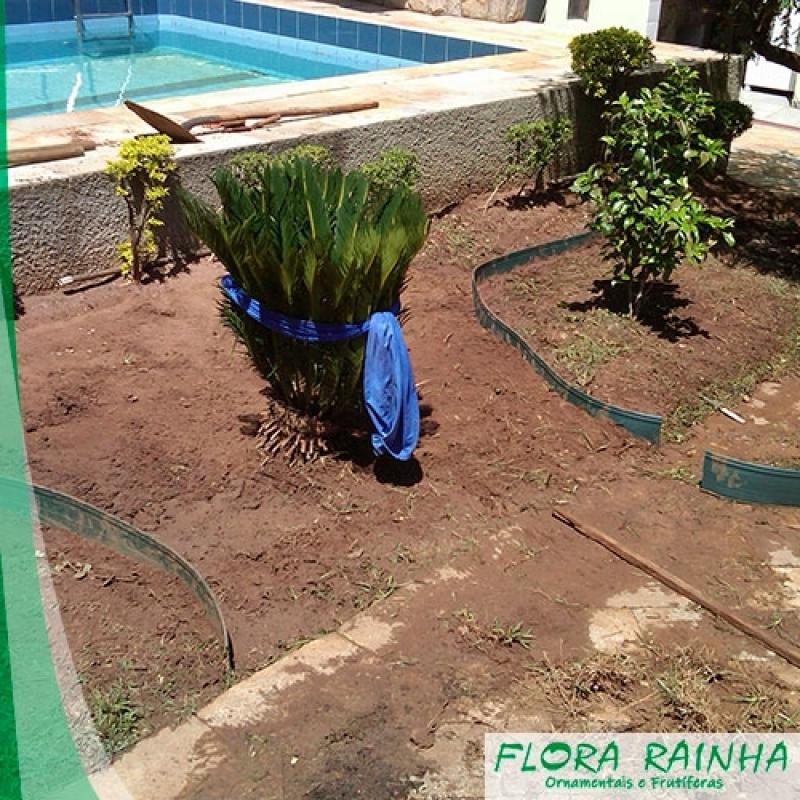 Limitador de Grama para Jardim Santa Cecília - Seixos para Jardim