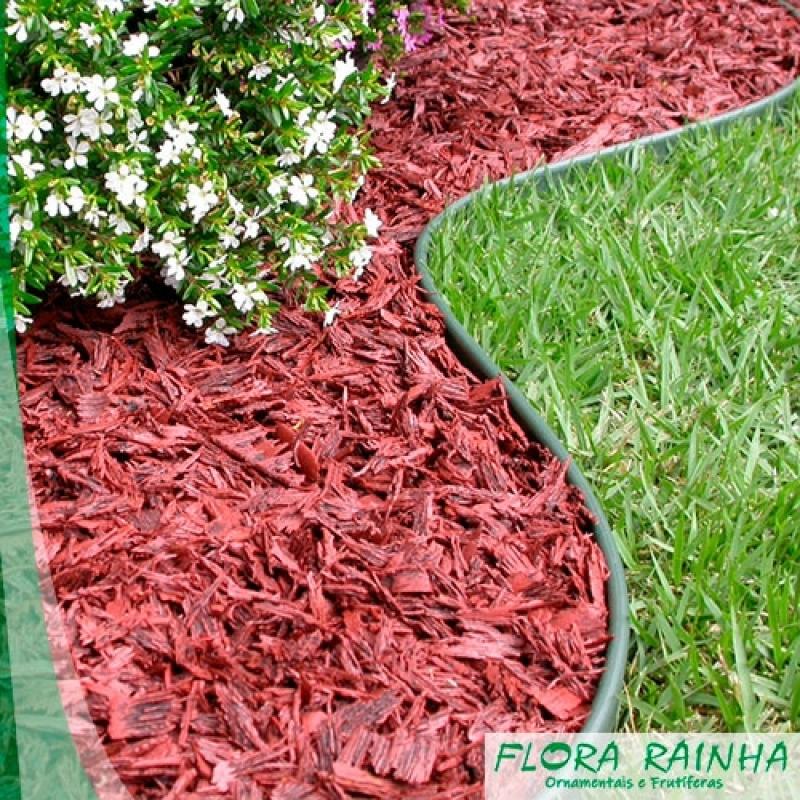 Onde Comprar Limitador de Grama para Jardim Itaquaquecetuba - Fontes para Jardim