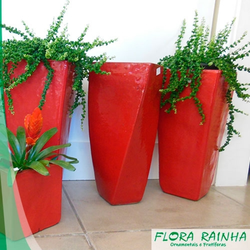 Onde Comprar Vasos Vietnamitas para Jardim São Roque - Vaso de Polietileno para Jardim