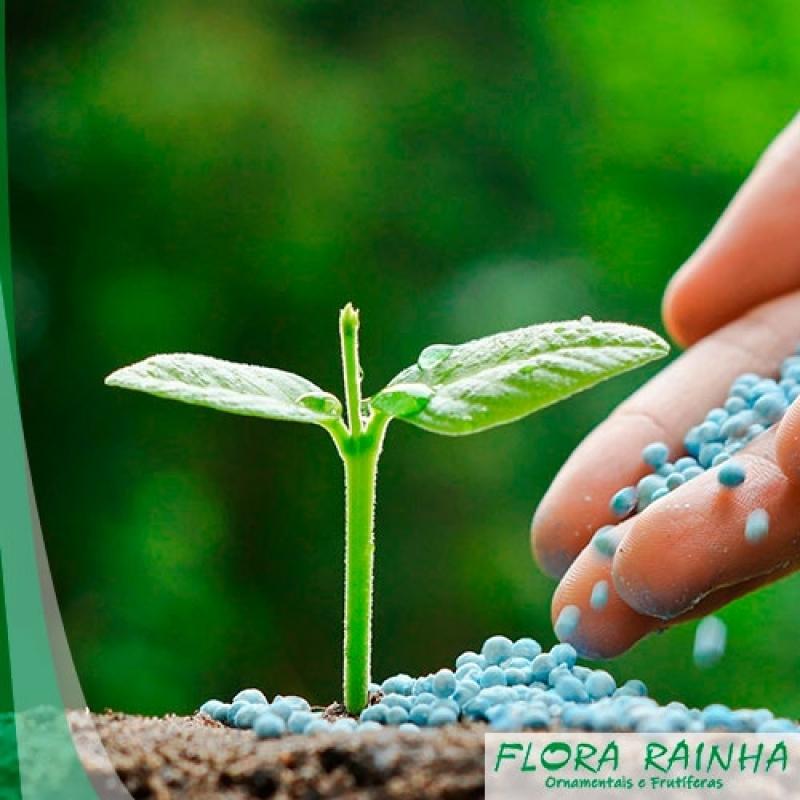 Onde Vende Fertilizante para Jardim Santo André - Adubo para árvores