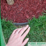 limitador de grama para jardim valor Santa Efigênia