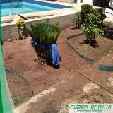 limitador de grama para jardim Santa Cecília
