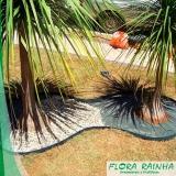 manta de bidim para jardim valor Anália Franco