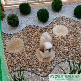 onde comprar pedras decorativas para jardim Jardim Helian
