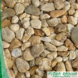 onde comprar seixos para jardim Vila Formosa