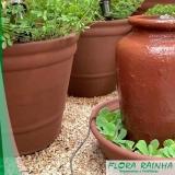 onde comprar vaso de barro para jardim Aricanduva