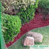onde vende limitador de grama para jardim Santa Cecília