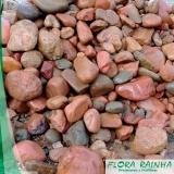 seixos para jardim Biritiba Mirim